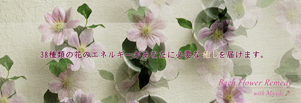 個人コンサルテーション、バッチ国際教育プログラムレベル1PTT講座 各種講座は大阪のバッチフラワー専門サロン・セラピースペースCRI